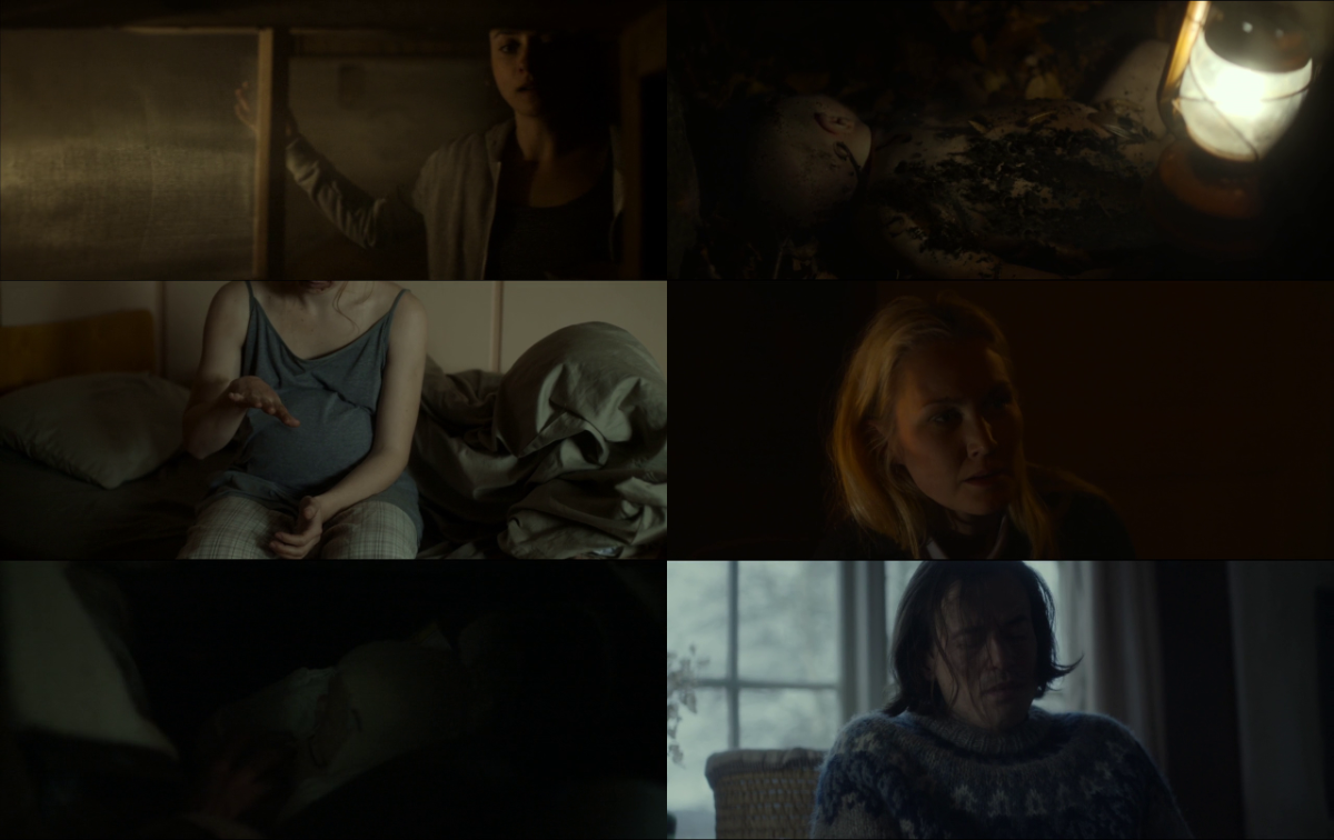 Shelley 2016 720p BluRay H264 AAC-RARBG