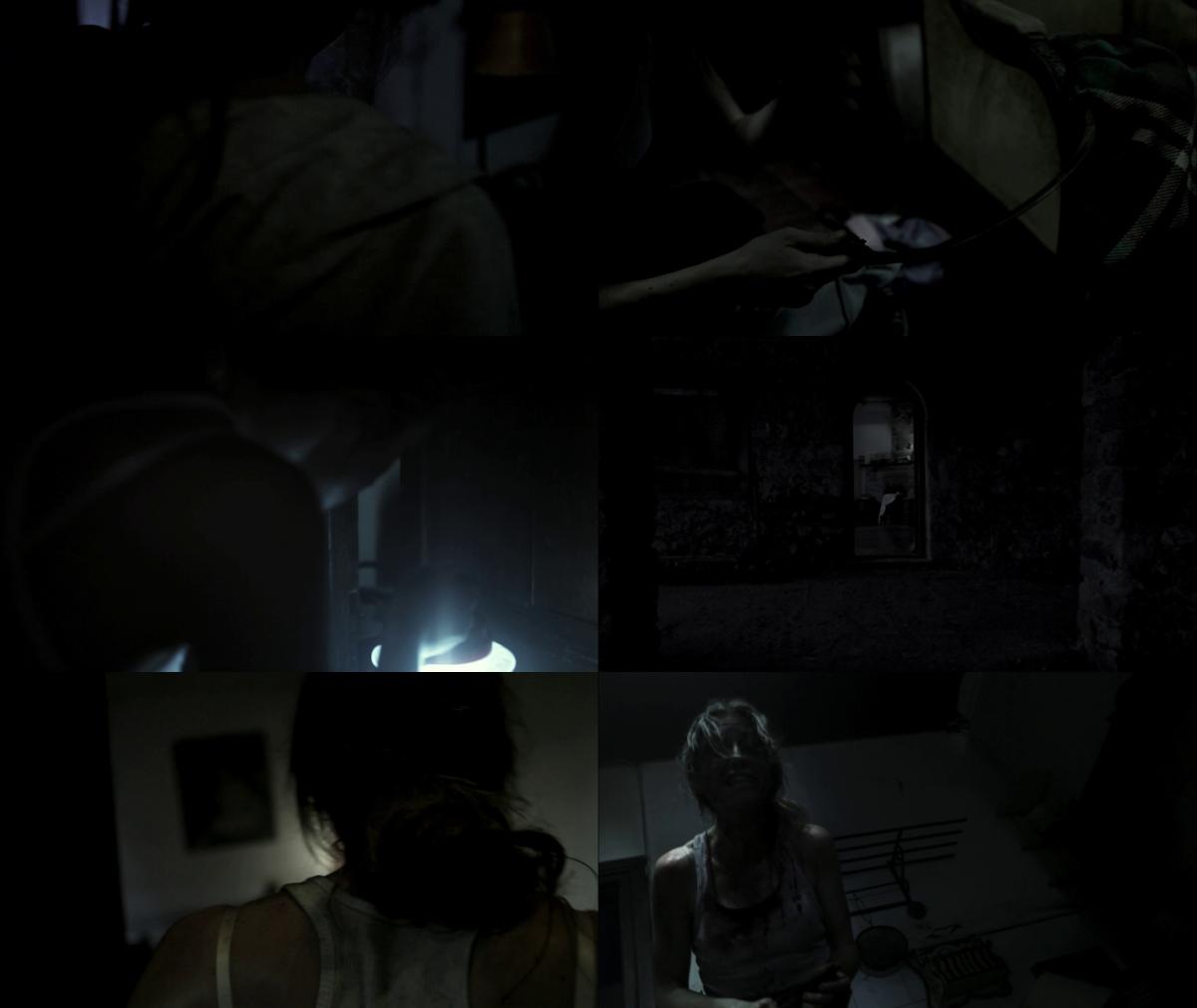 The Silent House 2010 1080p BluRay x264-BiPOLAR