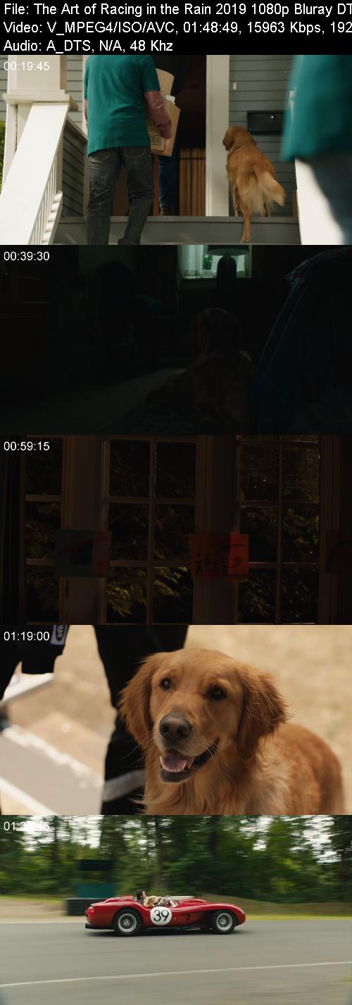 The Art of Racing in the Rain 2019 1080p Bluray DTS-HD MA 5 1 X264-EVO